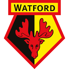 Watford Development